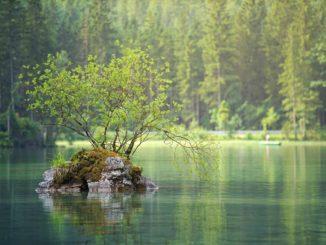 bilden föreställer Bjärka Säby badplats